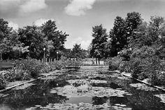 Jardins de Burle Marx no Museu da Cidade