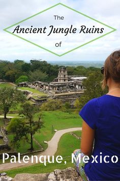 The Ancient Jungle Ruins of Palenque, Mexico
