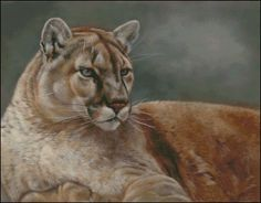 Cougar at Rest Counted Cross Stitch Pattern | Shinysun's Cross Stitching
