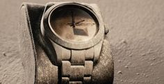 Fossilized Rolex