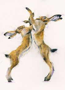 Hare Artwork by Kay Johns British Wildlife, Bird Prints, Livestock, Hare, Equestrian, Bunnies, Artist, Artwork, Animals