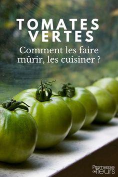 Que faire des tomates vertes ? Garden Online, Green Tips, Permaculture, Horticulture, Garden Plants, Gardening Tips, Food And Drink, Herbs, Vegetables