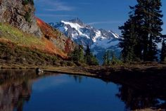 Fall in the forest | Photo gallery - HeraldNet.com  Mount Shuksan in the Mount Baker-Snoqualmie National Forest