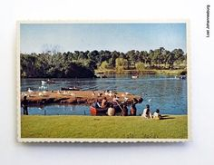 Zoo Lake,old Jo'burg Johannesburg City, Water Sources, Historical Pictures, Childhood Memories, South Africa, 19th Century, City Gardens, African, Touch