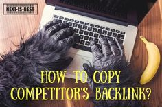 How to copy competitor's backlink? | Don't take me wrong | Best way to increase backlinks | How to get quality backlinks | Next Is Best