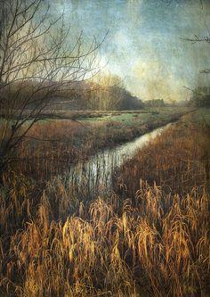 Towards the Marsh - Sarah Jarrett Watercolor Landscape, Landscape Art, Landscape Paintings, Landscape Photography, Art Photography, Tree Paintings, Really Cool Drawings, Photo Tree, Plein Air