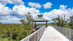 The newly opened trails and observation platform of the Green Mountain Scenic Overlook on the west flank of Lake Apopka make a great nature hike or bird watching destination. Once the second largest lake in Florida and famous for its clear water and bass fishing, Lake Apopka is now undergoing a restoration project that aims to reverse the effects of pollution that has turned it into a mucky mess.      (adsbygoogle = window.adsbygoogle || []).push({});
