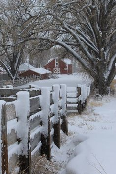 Follow the fence up to the barn - that is where you'll find your sanity.....