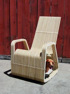 Unique rocking chair designed by Paul Kweton, for pet owners. #InteriorDecorInspiration #PetFurniture