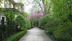 Through The Garden Gate.  25th Anniversary Tour of the Creme de la Creme of Toronto Residential Gardens!  Come join us.