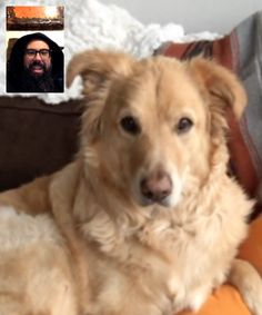 Morning FaceTime Session With My Best Friend Dylan http://ift.tt/2pj7GC1