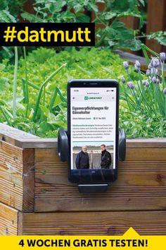 Jetzt das neue Digital-Abo kennenlernen – kostenlos und unverbindlich. Pure Leaf Tea, Pure Products, Drinks, Bottle, Food, Eye Circles, Getting To Know, Tips And Tricks, Cats