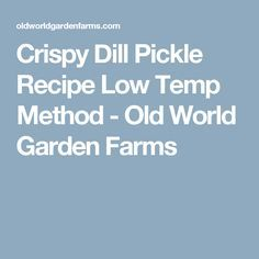 Crispy Dill Pickle Recipe Low Temp Method - Old World Garden Farms