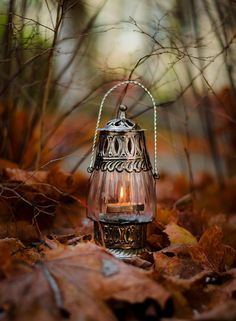 Fall lantern lights the way through the leaves Autumn Day, Autumn Leaves, Candle Lanterns, Candles, Autumn Aesthetic, Autumn Scenery, Fall Pictures, Oil Lamps, Samhain
