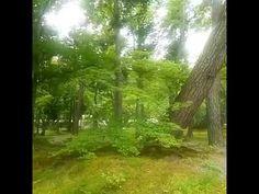 Nanzen-ji Temple南禅寺:The Lake Biwa canal琵琶湖疏水50 - YouTube