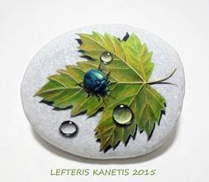 Painted Rock with Beetle, Dew Drops And Autumn Leaf!Is Painted with high quality…