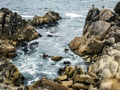 Lovers Point Scenic Photography, West Coast, Sunrise, Lovers, Park, Water, Outdoor, Water Water, Outdoors