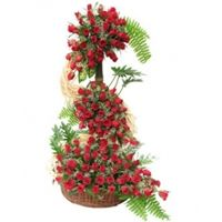 Send 100 Red Roses Basket in India through goenka florist online florist in India mid night delivery also available Buy Flowers Online, Online Flower Shop, Online Flower Delivery, 100 Red Roses, Red Rose Arrangements, Rose Basket, Bouquet Delivery, Pink Rose Bouquet, Birthday Bouquet