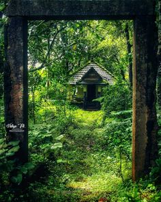 Small temple inside a forest, Kerala, God's own country ! Indian Photography, World Photography, Landscape Photography, Travel Photography, Photography Editing, Dance Photography, Kerala Travel, India Travel, Kerala Architecture