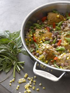 BRAISED CHICKEN AND VEGETABLES WITH HEIRLOOM BEANS