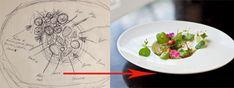 Crawfish_sketch-top.jpg