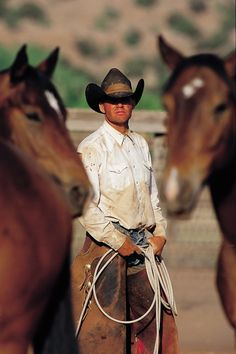 .A man and his ... horses                                                                                                                                                                                 More