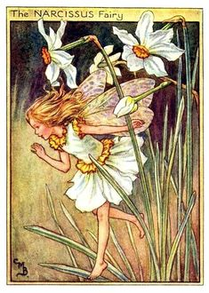 The Narcissus Fairy by Cicely Mary Barker