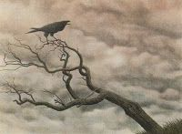 silentowl: The Raven. An Fiach Dubh. (including Crow).