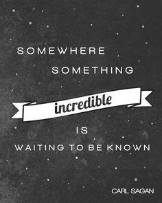 Somewhere something incredible is waiting to be known. Carl Sagan