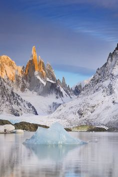Synthetic by tpoulton001