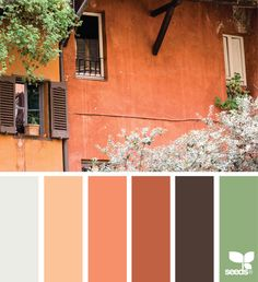 { italian hues } image via: @peoniesncream