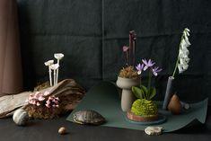 Papierblumen selber machen: Buchtipp Uncommon Paper Flowers Planter Pots, Inspiration, Dried Flowers, Sewing Patterns, Biblical Inspiration, Inspirational, Inhalation