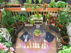 Small Balcony Garden idea - I'm gonna be busy this summer