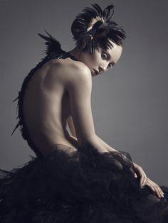 Swan by Yuri Morozov.