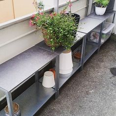 @annsozekevintage cuts two storage shelves to get one long bench. Perfect for the plants. #ikeahack #hyllis