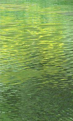 Golden pond. Photo: Åse Margrethe Hansen