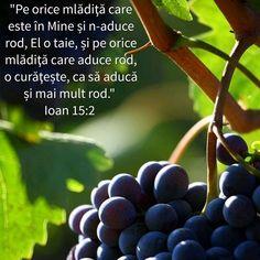 God Loves Me, Motto, Bible Verses, Pray, My Love, Bible, Scripture Verses, Bible Scripture Quotes, Mottos