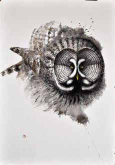 Great Grey Owl #2  -Karl Mårtens - watercolor