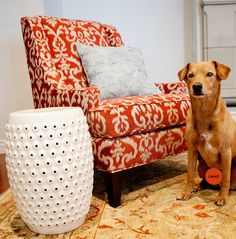 orange accent chair so iu0027ve been considering doing our bedroom in a