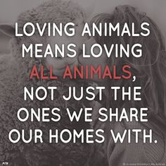 Love all Animals - speciecism is the same as racism and other forms of discrimination! Animal Quotes, Dog Quotes, Vegan Quotes, Animal Cruelty, Animal Welfare, Animal Rights, Compassion, Creatures, Lovers