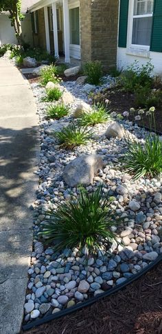 Mixing stone with plants to create a low maintenance foundation planting. Mixing stone with plants to create a low maintenance foundation planting. Landscaping With Rocks, Landscaping Plants, Outdoor Landscaping, Front Yard Landscaping, Outdoor Gardens, Landscaping Ideas, Planting Plants, Backyard Ideas, Hillside Landscaping
