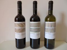 Organic wines from Cantina Colli Ripani near Ripatransone - Vinitours