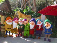 Happy, Sleepy, Doc, Dopey, Grumpy, Bashful, and Sneezy - Snow White and the Seven Dwarfs