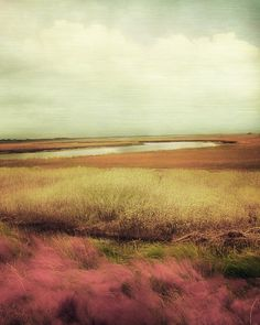 Wide Open Spaces Photograph by Amy Tyler - Wide Open Spaces Fine Art Prints and Posters for Sale