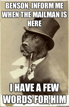 Old Money Dog - Benson inform me when the mailman is here I have a few words More Funny Animal Pics at FunnyzDaily.com -