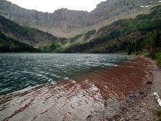 Bertha Lake trail