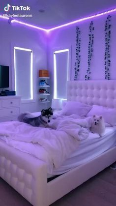 Neon Bedroom, Cute Bedroom Decor, Room Ideas Bedroom, Teen Room Decor, Girls Bedroom, Girl Bedroom Designs, Room Decor Teenage Girl, Cool Teen Bedrooms, Teenage Girl Bedrooms