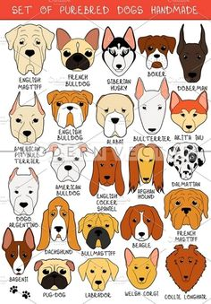 Set of 24 colored dogs different breeds handmade. Icons with dogs. Sketch of animals. Set of isolated dogs for design. Bulldog and Animal Sketches, Animal Drawings, Dog Sketches, Tiffany Kunst, Dog Quilts, Felt Dogs, Dog Crafts, Dog Illustration, Beagle Dog