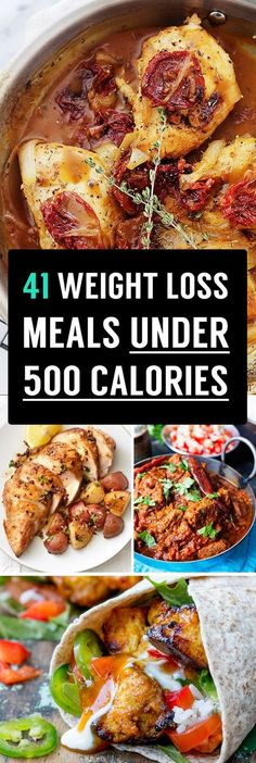 41 Weight Loss Meals Under 500 Calories That You Need To Know!