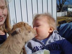 This little boy made the mistake of trying to feed the animals with his mouth.